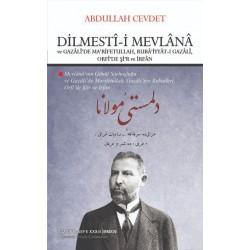 Dilmestî-i Mevlânâ ve Gazâlî'de Ma'rifetullah, Rubâ'iyyât-ı Gazâlî, Orfî'de Şi'r ve İrfân