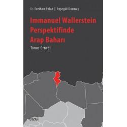 Immanuel Wallerstein Perspektifinde Arap Baharı |Tunus Örneği
