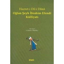 Hazret-i Dil-i Dana Oğlan Şeyh İbrahim Efendi Külliyatı